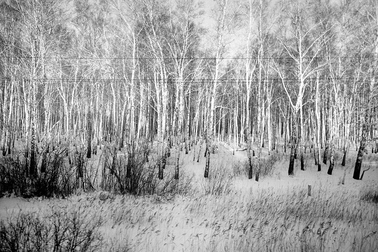 """""""Quelque part entre Tioumen et Novossibirsk"""", Sibérie, 2014"""