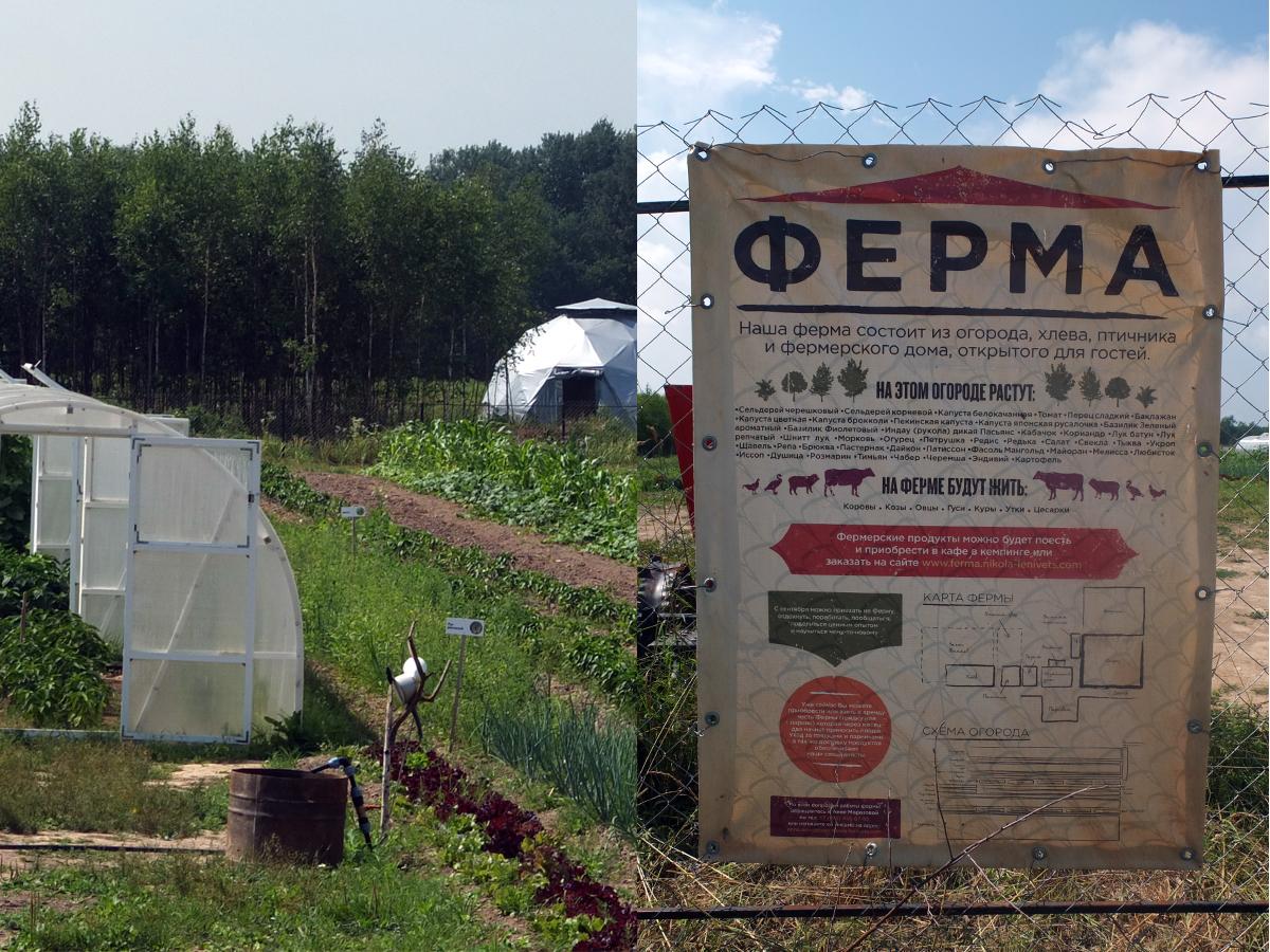 La ferme de Nikola-Lenivets : un modèle d'agriculture biologique et innovante.